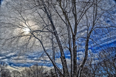 winter-417172_1280
