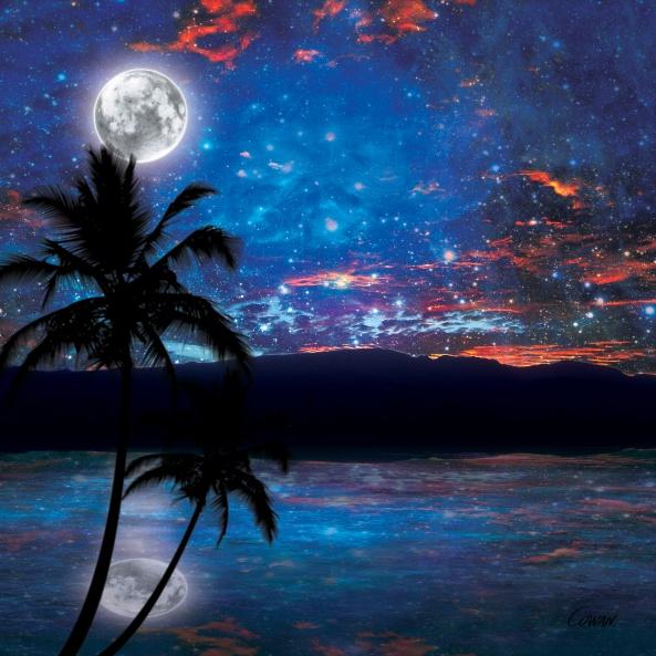 maui-starry-night-1626967
