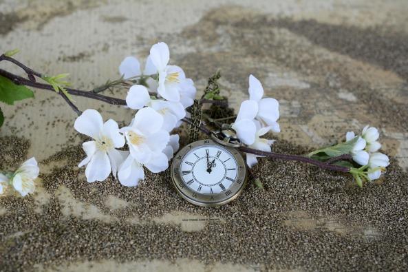 pocket-watch-1637392_1920